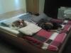 aber das Bett ist einfach ...